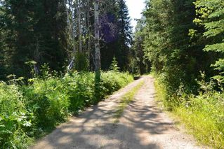"""Photo 2: LOT 1 HISLOP Road in Smithers: Smithers - Rural Land for sale in """"Hislop Road Area"""" (Smithers And Area (Zone 54))  : MLS®# R2491414"""