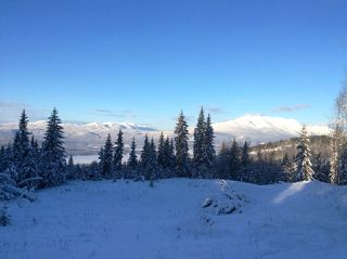 """Photo 37: LOT 1 HISLOP Road in Smithers: Smithers - Rural Land for sale in """"Hislop Road Area"""" (Smithers And Area (Zone 54))  : MLS®# R2491414"""