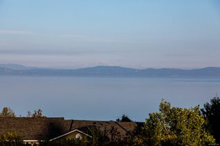 Photo 36: 5006 Hilarie Pl in : SE Cordova Bay House for sale (Saanich East)  : MLS®# 857728