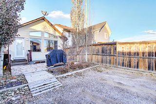 Photo 28: 1693 NEW BRIGHTON Drive SE in Calgary: New Brighton Detached for sale : MLS®# A1044917