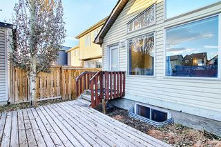 Photo 27: 1693 NEW BRIGHTON Drive SE in Calgary: New Brighton Detached for sale : MLS®# A1044917