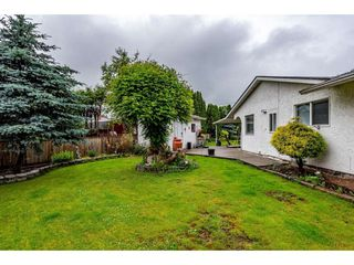 Photo 30: 2492 CAMERON Crescent in Abbotsford: Abbotsford East House for sale : MLS®# R2464314