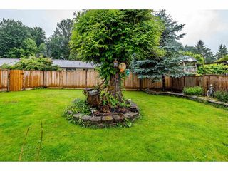 Photo 33: 2492 CAMERON Crescent in Abbotsford: Abbotsford East House for sale : MLS®# R2464314