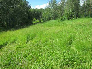 Photo 2: 51111 Range Road 205: Rural Strathcona County Cottage for sale : MLS®# E4205193