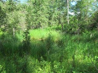 Photo 8: 51111 Range Road 205: Rural Strathcona County Cottage for sale : MLS®# E4205193