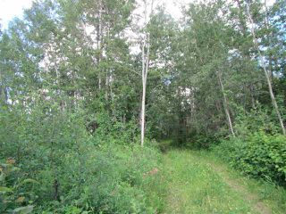 Photo 10: 51111 Range Road 205: Rural Strathcona County Cottage for sale : MLS®# E4205193
