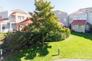 Photo 17: 204 930 North Park St in Victoria: Vi Central Park Condo for sale : MLS®# 844482