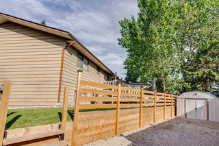 Photo 35: 644 RADCLIFFE Road SE in Calgary: Albert Park/Radisson Heights Detached for sale : MLS®# A1025632