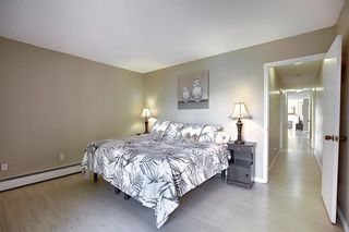 Photo 27: 305 220 26 Avenue SW in Calgary: Mission Apartment for sale : MLS®# A1037126