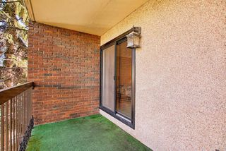 Photo 24: 305 220 26 Avenue SW in Calgary: Mission Apartment for sale : MLS®# A1037126