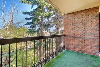 Photo 23: 305 220 26 Avenue SW in Calgary: Mission Apartment for sale : MLS®# A1037126