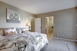 Photo 28: 305 220 26 Avenue SW in Calgary: Mission Apartment for sale : MLS®# A1037126