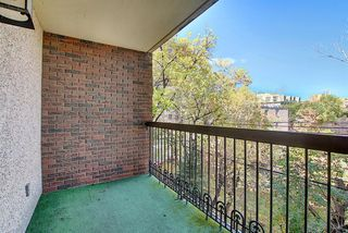 Photo 22: 305 220 26 Avenue SW in Calgary: Mission Apartment for sale : MLS®# A1037126