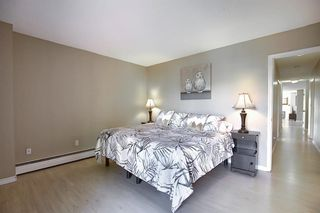 Photo 26: 305 220 26 Avenue SW in Calgary: Mission Apartment for sale : MLS®# A1037126