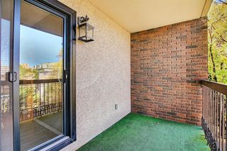 Photo 25: 305 220 26 Avenue SW in Calgary: Mission Apartment for sale : MLS®# A1037126