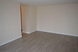 Photo 7: 304 6708 90 Avenue in Edmonton: Zone 18 Condo for sale : MLS®# E4218556