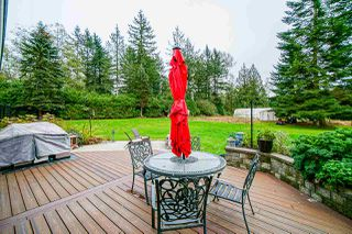 Photo 31: 24114 80 Avenue in Langley: County Line Glen Valley House for sale : MLS®# R2516295