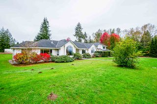 Photo 3: 24114 80 Avenue in Langley: County Line Glen Valley House for sale : MLS®# R2516295