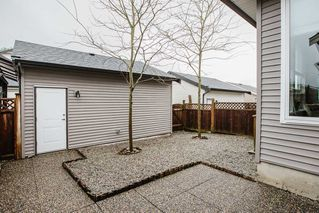 """Photo 38: 10502 JACKSON Road in Maple Ridge: Albion House for sale in """"ROBERTSON HEIGHTS"""" : MLS®# R2524577"""