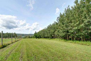 Photo 19: 13189 SUNNYSIDE Drive in Charlie Lake: Lakeshore House for sale (Fort St. John (Zone 60))  : MLS®# R2392882