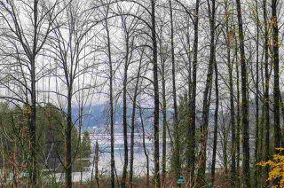 "Photo 15: 407 801 KLAHANIE Drive in Port Moody: Port Moody Centre Condo for sale in ""Inglenook"" : MLS®# R2419189"