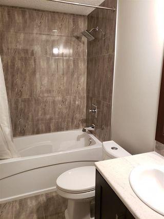 Photo 19: 9842 85 Avenue in Edmonton: Zone 15 House for sale : MLS®# E4181921