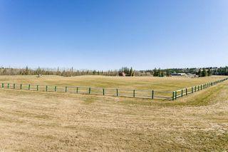 Photo 46: 12304 65 Avenue in Edmonton: Zone 15 House for sale : MLS®# E4195255