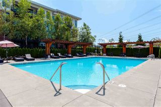 """Photo 26: 319 3323 151 Street in Surrey: Morgan Creek Condo for sale in """"Harvard Gardens - Elgin House"""" (South Surrey White Rock)  : MLS®# R2481310"""