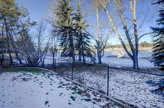 Photo 45: 1396 Shawnee Road SW in Calgary: Shawnee Slopes Detached for sale : MLS®# A1050612