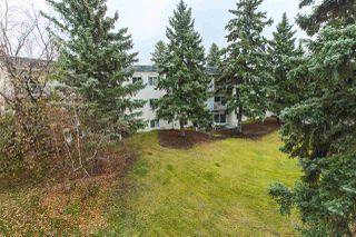 Photo 7: 311 5730 RIVERBEND Road in Edmonton: Zone 14 Condo for sale : MLS®# E4177040