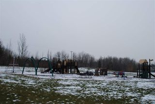 Photo 38: 205 53302 RGE RD 261: Rural Parkland County House for sale : MLS®# E4180305