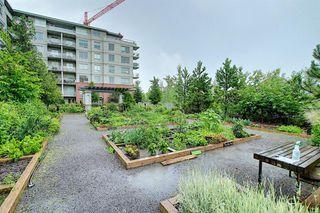 Photo 35: 801 38 9 Street NE in Calgary: Bridgeland/Riverside Apartment for sale : MLS®# A1017164