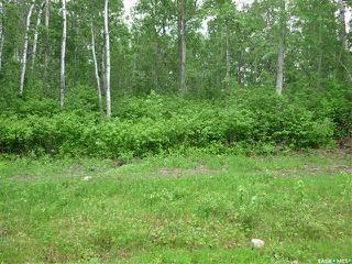 Photo 1: 1 Smits Avenue in Codette: Lot/Land for sale : MLS®# SK834450