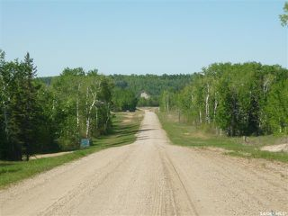 Photo 3: 1 Smits Avenue in Codette: Lot/Land for sale : MLS®# SK834450