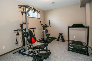 Photo 25: 8732 208 Street in Edmonton: Zone 58 House for sale : MLS®# E4166854