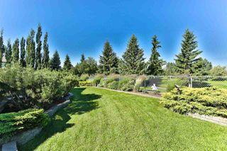 Photo 28: 8732 208 Street in Edmonton: Zone 58 House for sale : MLS®# E4166854