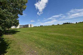 Photo 29: 19 1415 62 Street in Edmonton: Zone 29 Townhouse for sale : MLS®# E4171082