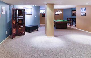 Photo 23: 4 GRANDIN LN in St. Albert: Zone 24 House for sale : MLS®# E4166911