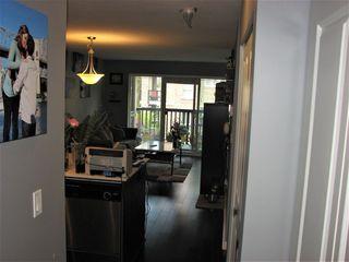 """Photo 6: 313 21009 56 Avenue in Langley: Salmon River Condo for sale in """"CORNERSTONE"""" : MLS®# R2454324"""