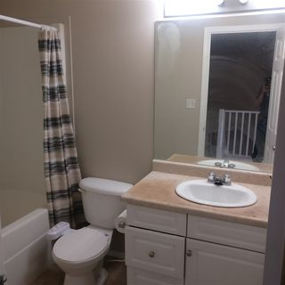 Photo 5:  in Edmonton: Zone 30 House Half Duplex for sale : MLS®# E4168555