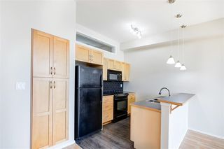 Photo 16: 209 10531 117 Street in Edmonton: Zone 08 Condo for sale : MLS®# E4212036