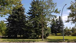 Photo 4: 9338 83 Street in Edmonton: Zone 18 Vacant Lot for sale : MLS®# E4170890