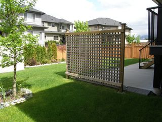 Photo 5: 12473 201ST STREET in MCIVOR MEADOWS: Home for sale : MLS®# V1047138