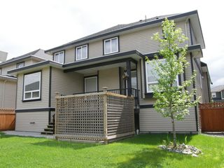 Photo 4: 12473 201ST STREET in MCIVOR MEADOWS: Home for sale : MLS®# V1047138
