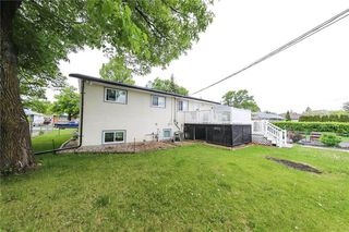 Photo 8: 351 Hawthorne Avenue in Winnipeg: North Kildonan Residential for sale (3F)  : MLS®# 202013297