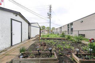 Photo 7: 351 Hawthorne Avenue in Winnipeg: North Kildonan Residential for sale (3F)  : MLS®# 202013297