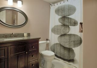 Photo 20: 46 HERITAGE Crescent: Stony Plain House for sale : MLS®# E4204345