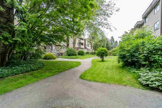 "Photo 18: 32 2440 WILSON Avenue in Port Coquitlam: Central Pt Coquitlam Condo for sale in ""RA1"" : MLS®# R2498750"