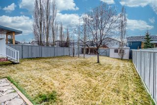 Photo 34: 176 Creek Gardens Close NW: Airdrie Detached for sale : MLS®# A1048124