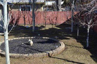 Photo 19: 12036 143 Avenue in Edmonton: Zone 27 House for sale : MLS®# E4168329